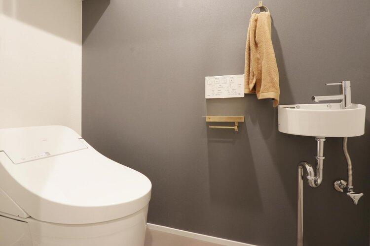 手洗いカウンター付きトイレ。